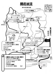 z_開花状況(2014年10月10日現在)