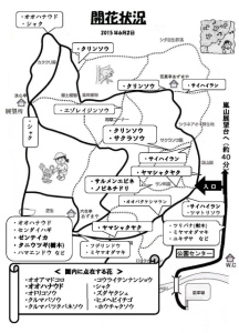 z_開花状況(2015年6月2日現在)