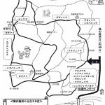 z_開花状況(2017年4月22日)